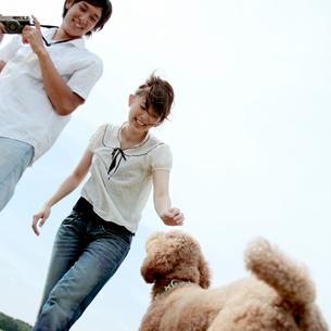 じゃれながら写真を撮るカップルと犬の写真素材 [FYI03911611]