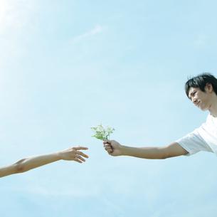 野花を受け渡すカップルの写真素材 [FYI03911625]