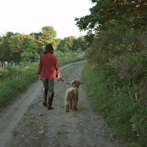 犬と散歩する中高年女性の写真素材 [FYI03911818]