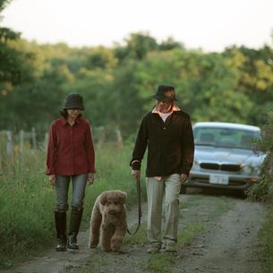 田舎道を散歩するシニア夫婦と犬の写真素材 [FYI03911822]
