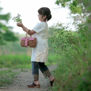 野花を摘む女の子の写真素材 [FYI03911842]