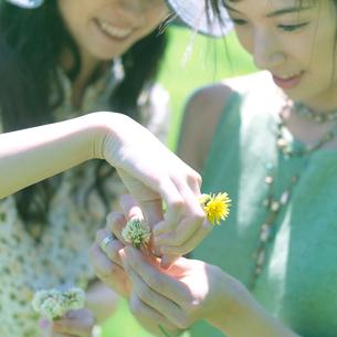 花冠を作る2人の女性の写真素材 [FYI03911930]