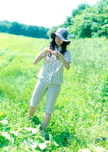 花冠を作る女性の写真素材 [FYI03911933]