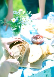 ライ麦パンを切る女性の写真素材 [FYI03911960]