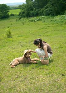 高原に座る女性と犬の写真素材 [FYI03912087]
