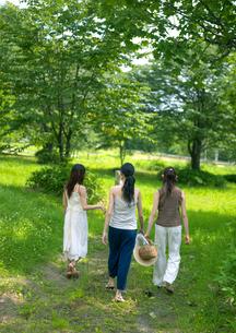 林を散歩する3人の女性の写真素材 [FYI03912095]