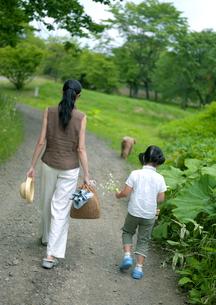 散歩をしている親子と犬の写真素材 [FYI03912125]