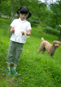 花冠を作る女の子と犬の写真素材 [FYI03912135]