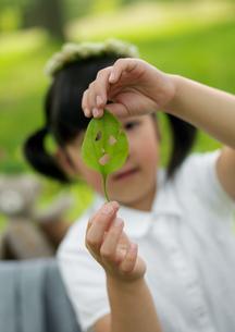 葉っぱで遊ぶ女の子の写真素材 [FYI03912171]