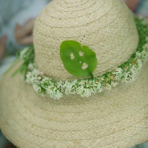 花冠のついた麦わら帽子の写真素材 [FYI03912173]