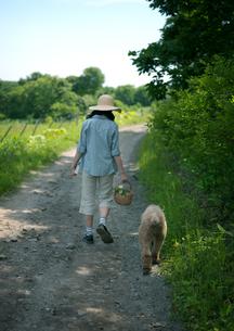 一本道を散歩する女性と犬の写真素材 [FYI03912285]