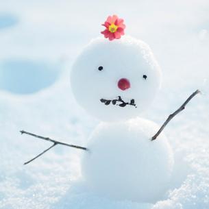 頭に花を乗せた雪だるまの写真素材 [FYI03913030]