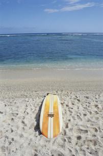 砂浜に置いたロングボードの写真素材 [FYI03913631]