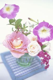 グラスに生けたピンクバラ等の写真素材 [FYI03913654]