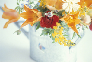 グレイ水差しにルピナス・赤いバラ等の写真素材 [FYI03913691]
