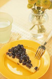 黄色のお皿にブルーベリーのタルトの写真素材 [FYI03913709]