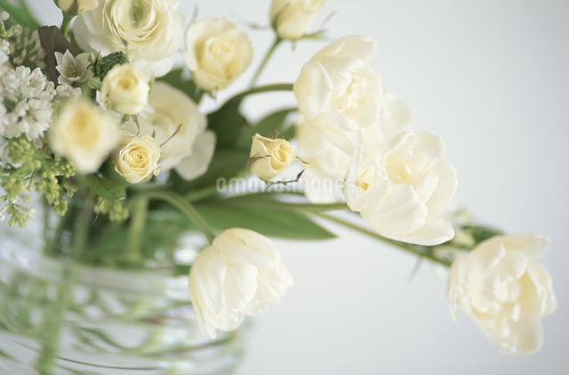 ガラス花瓶に生けた白バラの写真素材 [FYI03913813]