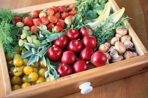 野菜と食材の写真素材 [FYI03913818]