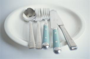 食器の写真素材 [FYI03913831]