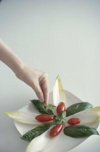 サラダにミントを添える手の写真素材 [FYI03913861]