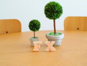 テーブルに置かれた積み木文字FXとグリーンの写真素材 [FYI03913948]