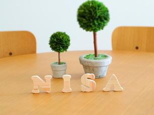 テーブルに置かれた積み木文字NISAとグリーンの写真素材 [FYI03913955]