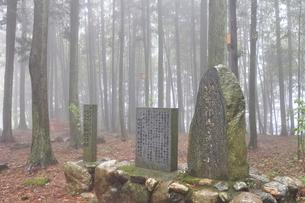 坂本龍馬宿泊の地の碑の写真素材 [FYI03913976]