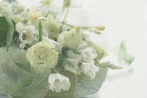 白やグリーンの花の花束の写真素材 [FYI03914841]