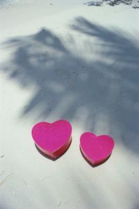 ビーチのヤシの木の影とハートの写真素材 [FYI03915409]