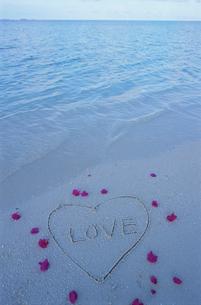 ビーチの花びらとLOVEの文字の写真素材 [FYI03915422]