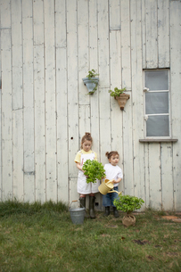 苗木を持って庭に立つハーフの姉妹の写真素材 [FYI03915942]