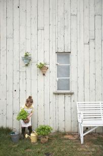 苗木を持ったハーフの女の子の写真素材 [FYI03915943]