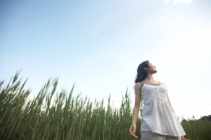 草原で空を見上げる女性の写真素材 [FYI03916286]