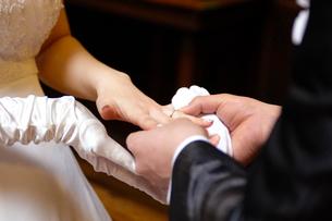 指輪交換をする新郎新婦の写真素材 [FYI03917119]