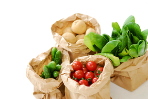 野菜の写真素材 [FYI03917136]