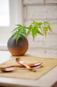花瓶と木のスプーンの写真素材 [FYI03917225]
