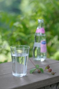 ブラックベリーと水の写真素材 [FYI03917329]