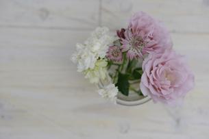 バラとアストランティアの写真素材 [FYI03917387]