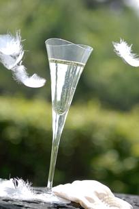シャンパングラスと羽の写真素材 [FYI03917486]