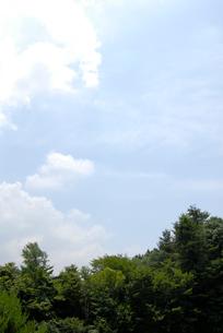 空の写真素材 [FYI03917500]