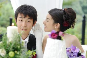新郎と新婦の写真素材 [FYI03917678]