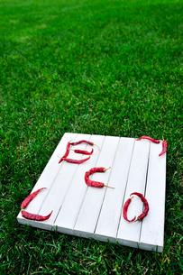 板の上に赤唐辛子で書かれたエコの文字の写真素材 [FYI03917887]