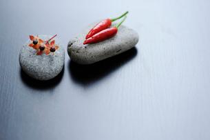 石の上のヒペリカムと赤唐辛子の写真素材 [FYI03918110]