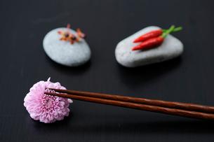 菊と箸と石の上のヒペリカムと赤唐辛子の写真素材 [FYI03918112]