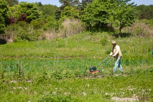 草刈をする男性の写真素材 [FYI03918301]