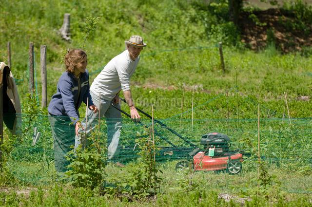 草刈をする男性と女性の写真素材 [FYI03918303]