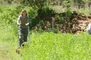 草刈をする女性と男性の写真素材 [FYI03918315]