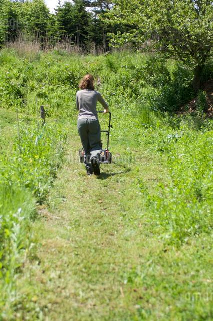 草刈をする女性の写真素材 [FYI03918321]