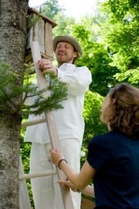 木に巣箱を取り付ける男性と女性の写真素材 [FYI03918403]