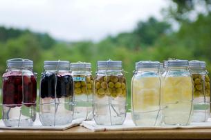 果実酒の瓶詰めの写真素材 [FYI03918453]